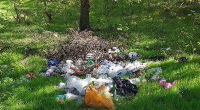 Креативный подход: В Ростовской области чиновники ликвидировали три мусорных «свалки» в фотошопе