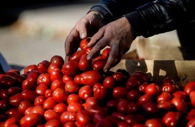 Правительство Казахстана хочет устранить подорожание овощей в праздники