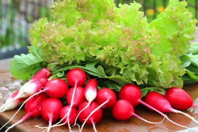 Витаминная бомба: ТОП-5 весенних овощей, которые восполнят дефицит витаминов