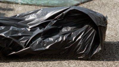 В Петербурге обнаружили пакеты с фрагментами человеческого тела