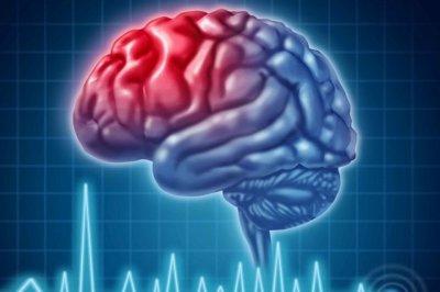 Ученые рассказали, как исследуют человеческий мозг