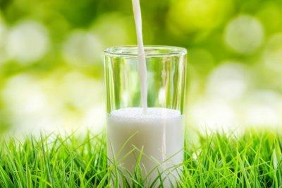Эксперты назвали марки молока, которые лучше не покупать