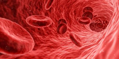 Врачи рассказали об опасности избытка железа в организме