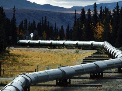 Германия приостановила прием нефти из России по «Дружбе»