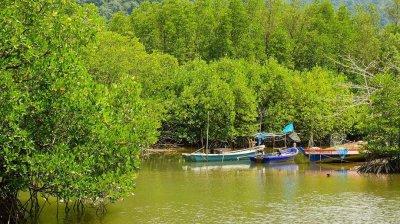 Индонезия из-за эрозии за 15 лет потеряла 30 тысяч гектаров земли