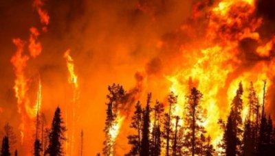 Ураган «Дориан» и лесные пожары в Сибири могут быть результатом экспериментов с климатическим оружием