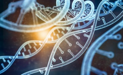 Новое лекарство от рака прошло тестирование