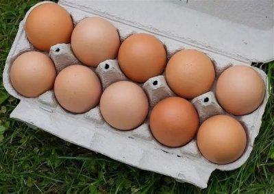 Эксперт назвал безопасный способ хранения и приготовления яиц