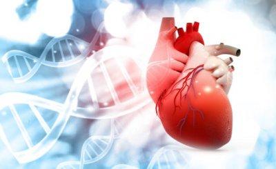 Ученые нашли фактор, который может спрогнозировать развитие рака