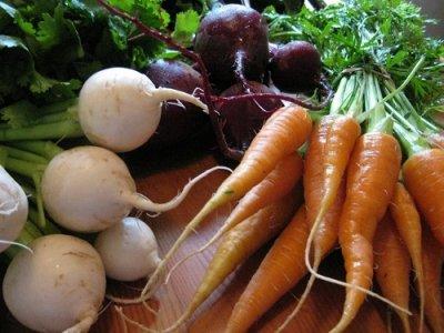 Диетолог рассказала, кому не стоит есть картошку и морковь