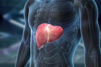 Врачи назвали первые симптомы токсического поражения печени