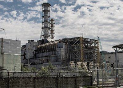 В реакторе на ЧАЭС нашли грибок, который может стать лекарством против облучения