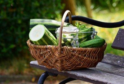 Зарубежные эксперты рассказали, что произойдет с организмом, если кушать кабачки в сезон ежедневно
