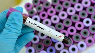 Вирусолог объяснила, почему COVID-19 нельзя искоренить