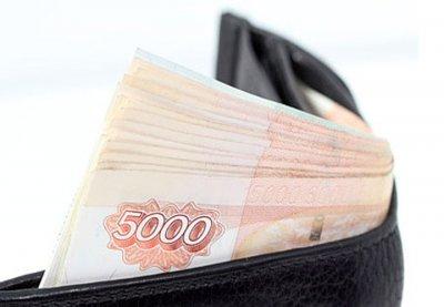 В Башкирии 70-летний дед украл у внука 11 тысяч рублей