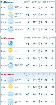 погода в петербурге в феврале золотой