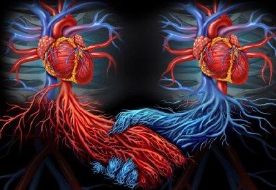 Ученые: Люди с двумя сердцами могут быть представителями новой расы