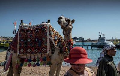Новости Египта сегодня: власти потратят $10 миллионов на привлечение туристов в Шарм-эль-Шейх