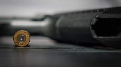 В Саратовской области 6-летний мальчик случайно застрелил 4-летнюю сестру